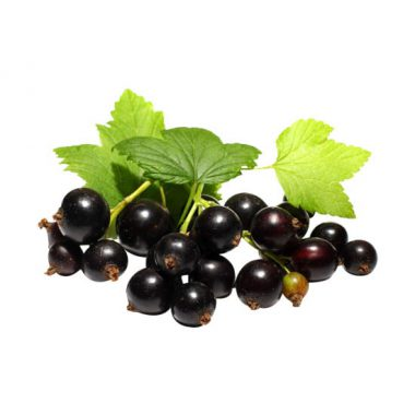 blackcurrant-e-liquid