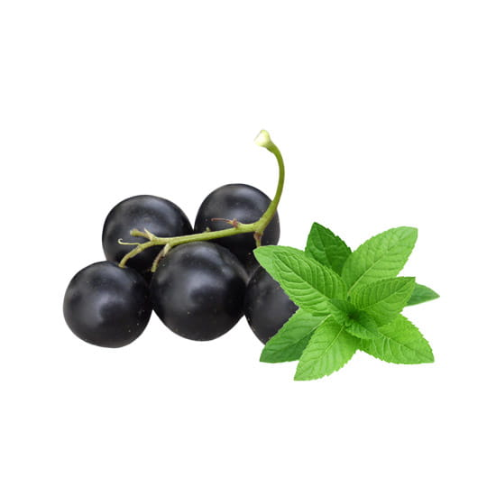 blackcurrant-menthol-e-liquid