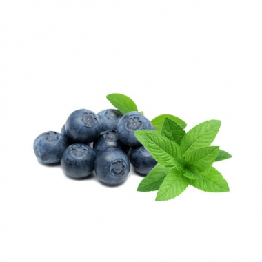 blueberry-menthol-e-liquid