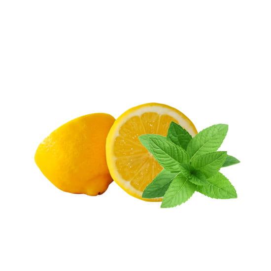 lemon-menthol-e-liquid